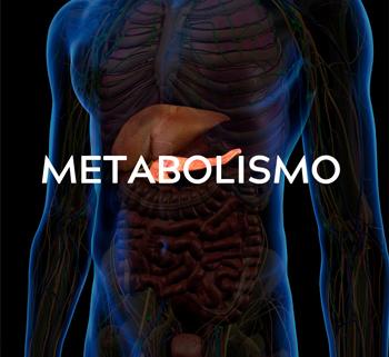 Benefici nel metabolismo
